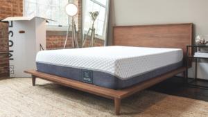 muse mattress